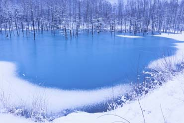 Blue Pond (Aoiike)(Furano, Biei, Sounkyo Gorge)