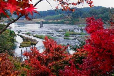 曽木の滝公園(鹿児島)