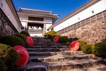 Kastil Gujo Hachiman(Gifu)