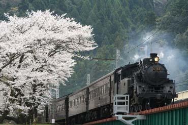 大井川铁道(静冈)