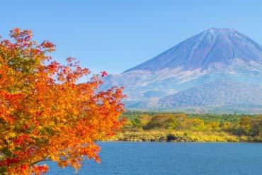 Hồ Shoji(Yamanashi)
