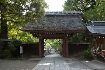 Jindaiji Temple(Tokyo)