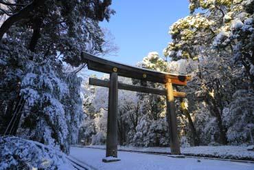 Meiji Jingu Shrine(Tokyo)
