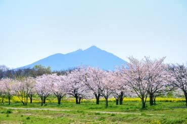 Mt.Tukuba(Ibaraki)