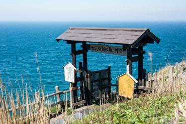 Cape Kamui(Other Areas of Hokkaido)