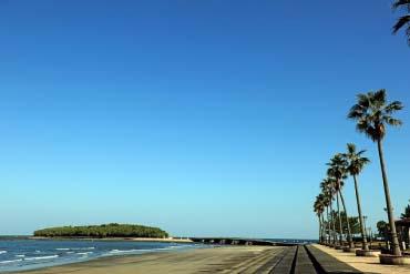 နိခ်ိနန္းပင္လယ္ကမ္းနား