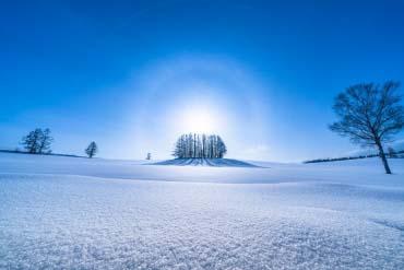 マイルドセブンの丘(富良野・美瑛・層雲峡)