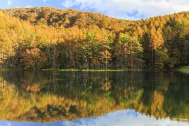 Mishaka Pond(Nagano)