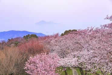 Mount Shiude(Kagawa)