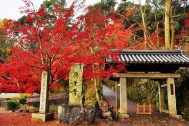 兴圣寺(京都)
