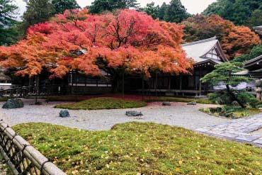 雷山千如寺大悲王院(福岡・博多)
