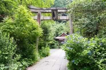 Đền thờ Ootoyo
