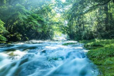 Thung lũng Kikuchi