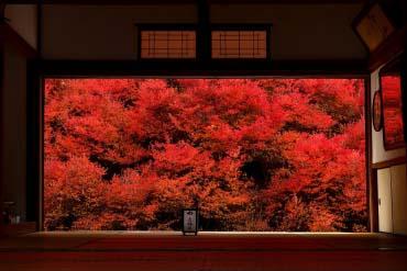 Ngôi đền Ankokuji