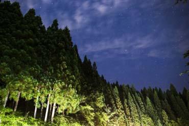 天之川萤火虫节(滋贺、琵琶湖)