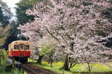 Đường sắt Kominato(Chiba)