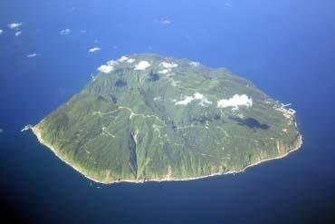 御蔵島のミナミハンドウイルカ(東京)