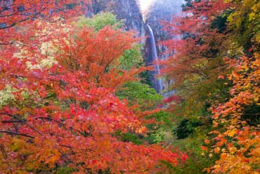 Yonako Falls