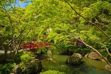 祐徳稲荷神社 (佐賀)