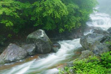 Oshidori Kakushi Falls(Nagano)
