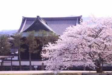 Đền Tachibana