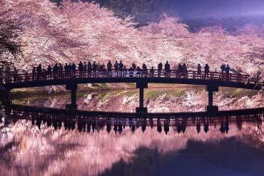 弘前公園(青森)