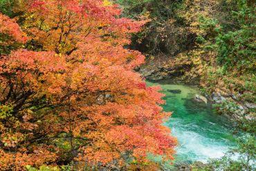 Lembah Atera (Nagano)
