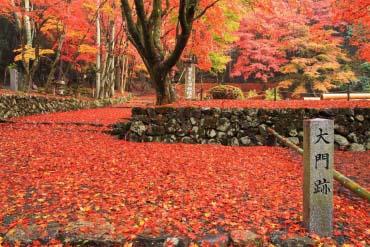 鶏足寺(滋賀・琵琶湖)