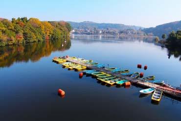 Lake Kameyama(Chiba)