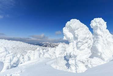 藏王树冰群