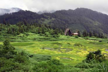 Koya Pond, Tengu Garden