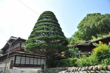 Akasawa in Hayakawa Village