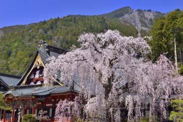 Chùa Minobu-san Kuon-ji