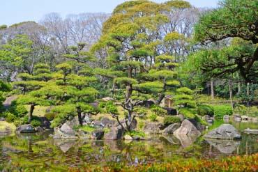 天王寺公园(大阪)
