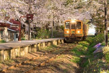 Ashino Park(Aomori)