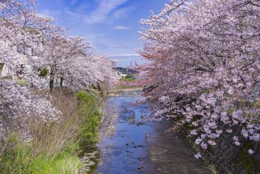 Onda River(Tokyo)