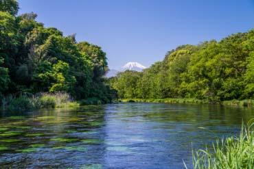 Sông Kakita(Shizuoka)