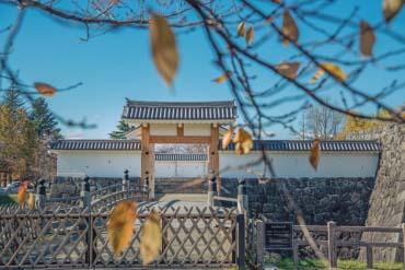 霞城公園(山形)