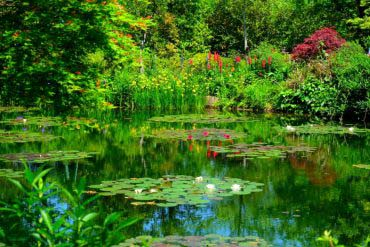 Monet's Garden(Kochi)