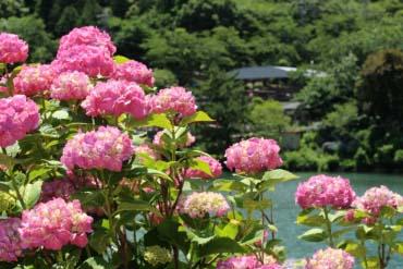 Katahara Onsen (Hot Springs)(Aichi)