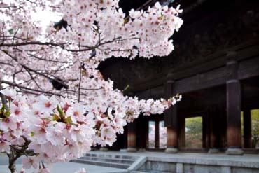 Nanzenji Temple(Kyoto)