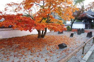 光明禅寺(福岡・博多)
