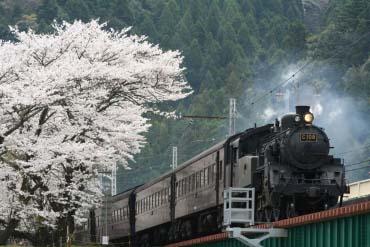 大井川鐵道(靜岡)