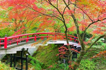 Momiji Bridge (Kajika Bridge)