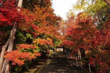 安国寺(兵庫・神戸)