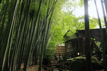 報国寺 (鎌倉)