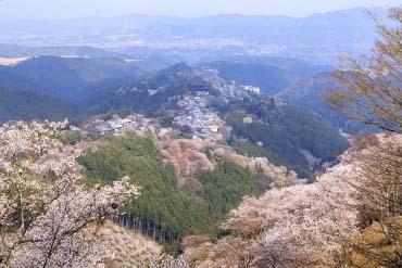 吉野山(奈良)