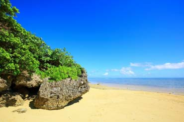 Kohama Island