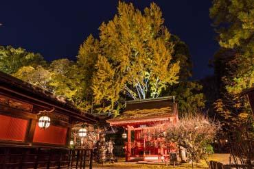 北野天満宮(京都)