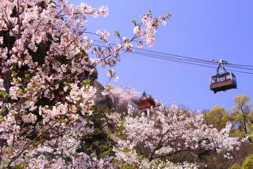 Senkoji Park(Hiroshima & Miyajima)